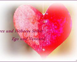 Herz-und höheres Selbst - Ego und Verstand