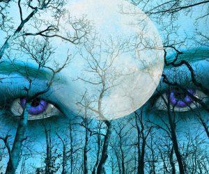 Die Bostschaften unseres Körpers verstehen, die Augen