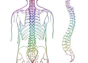 LichtEnergie-Massage Halswirkelsäule