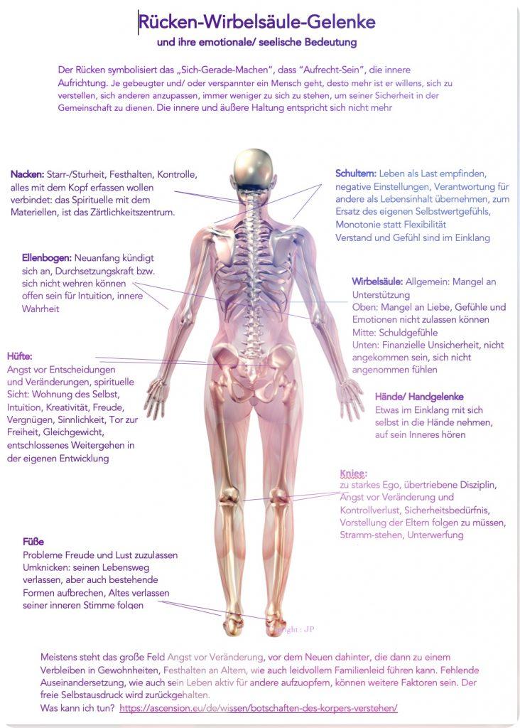Rücken -ws-gelenke-schmerzen